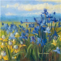 Blue and Yellow Flower Field