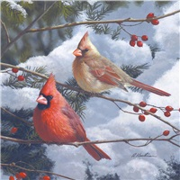 Cardinals & Berries