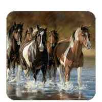 Horses Through Water