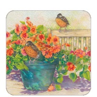 Nasturtiums and Robins