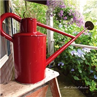 A Red Watering Can