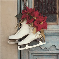 Skates with Poinsettias