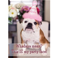 Doggy Party Hat