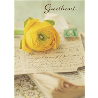 Yellow Flower Post Card