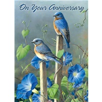 Bluebirds in Meadow