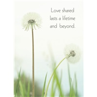 Love Shared a Lifetime