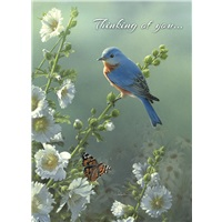 Bluebird & Hollyhocks