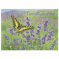 Butterfly in the Lavender
