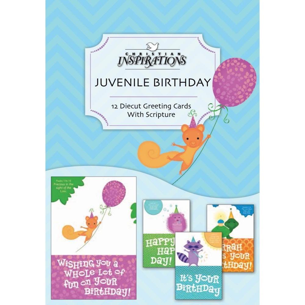 Birthday Juvenile Boxed Greeting Cards Ci22323