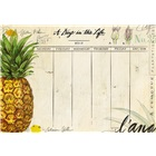 A Day in the Life  Planner Pad ADL36140