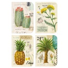 Field Guide Deluxe Assorted Note Cards DAN36142
