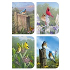 Songbirds Deluxe Assorted Note Cards DAN39079