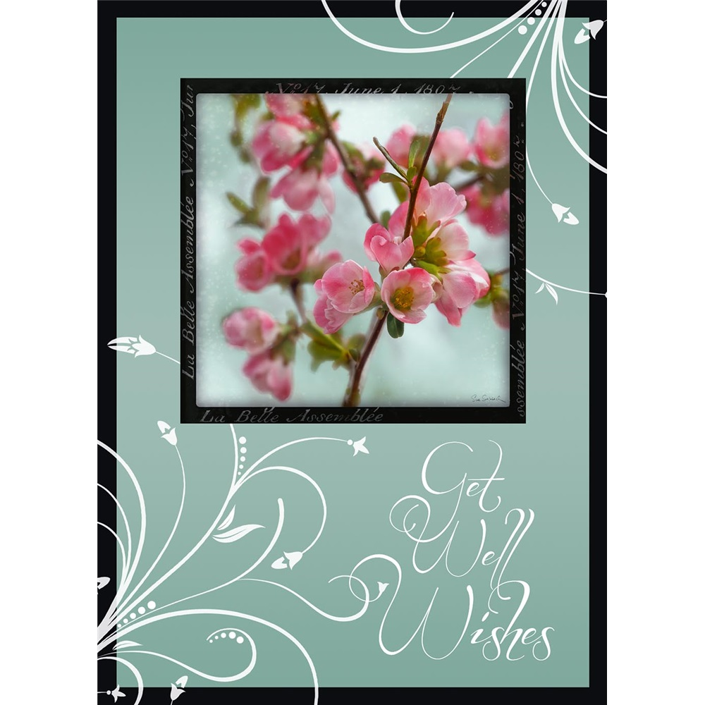 Legacy get well greeting cards gcd12704 loading zoom kristyandbryce Image collections