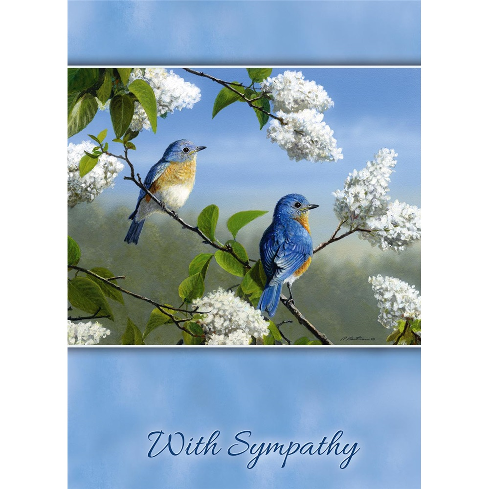 Legacy Sympathy Greeting Cards Gcd14639