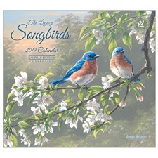 Songbirds 2019 Mini Wall Calendar MCA46853