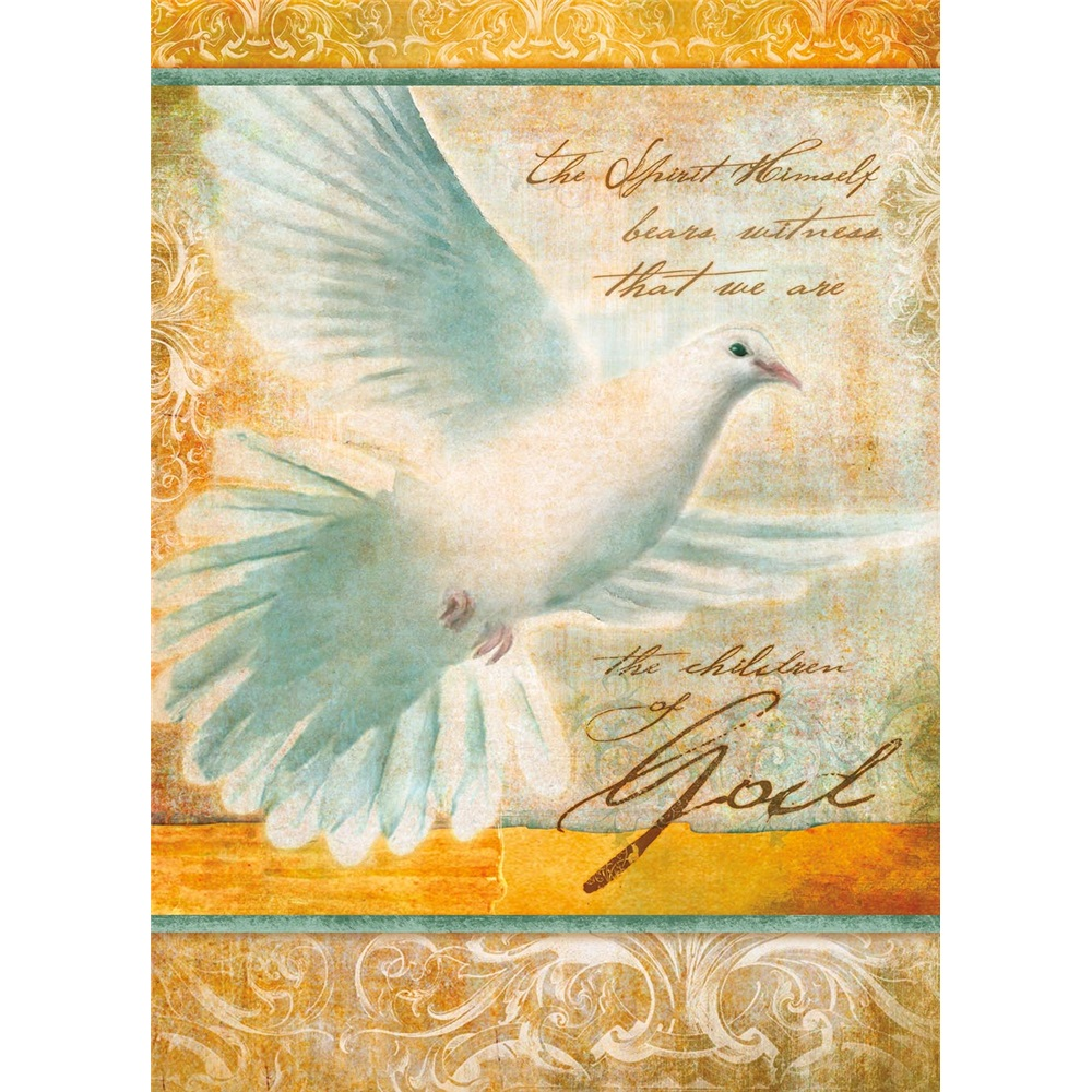 Legacy Of Faith Confirmation Greeting Cards Scd10297